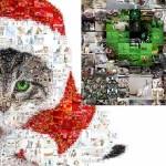 Colaj foto -15 cele mai bune programe de facut colaj de poze online