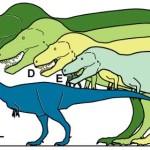 În Arctica sa descoperit un mini Tiranozaur