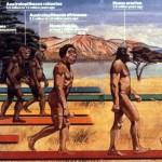 Top 10 mistere despre evolutia omului