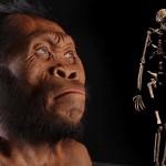 Homo naledi - nouă specie umană