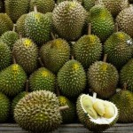 Fructe exotice - Durian