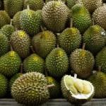 23  fructe exotice ciudate de care veţi fi cu siguranţă surprinşi