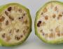 Cum arătau fructele şi legumele - banane