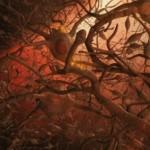 Un nou tratament Alzheimer reface complet funcţionarea memoriei