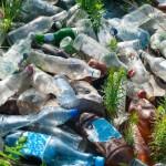 Oamenii de ştiinţă recent au descoperit bacteriile care pot digera plasticul