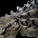 A fost prezentat un dinozaur incredibil de bine conservat vechi de 110 milioane de ani