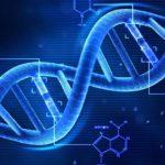 Prima viaţă pe Pământ: Oamenii de ştiinţă au descoperit o structură proteică capabilă de auto-replicare