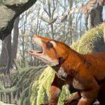 fosile specie nouă Cifelliodon wahkarmoosuch