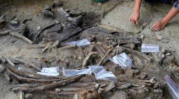 Urme de hominizi pe Filipine