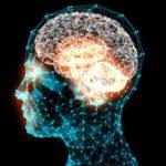 Oamenii de știință au găsit aproape 1000 de gene noi asociate cu inteligenţa
