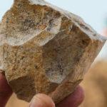 Noi unelte preistorice descoperite a strămoşilor umani